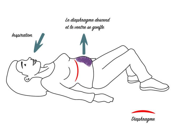 Respiration diaphragmatique